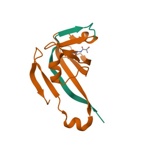 panD logo
