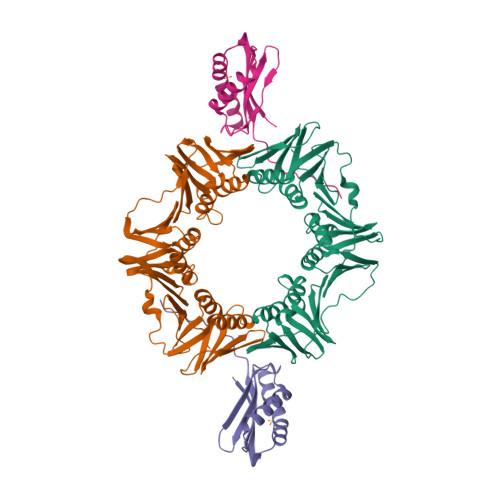 dnaN logo