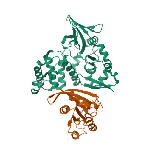 RAP1B logo