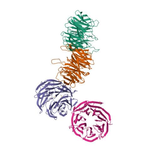 yncE logo