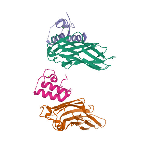 celCCA logo