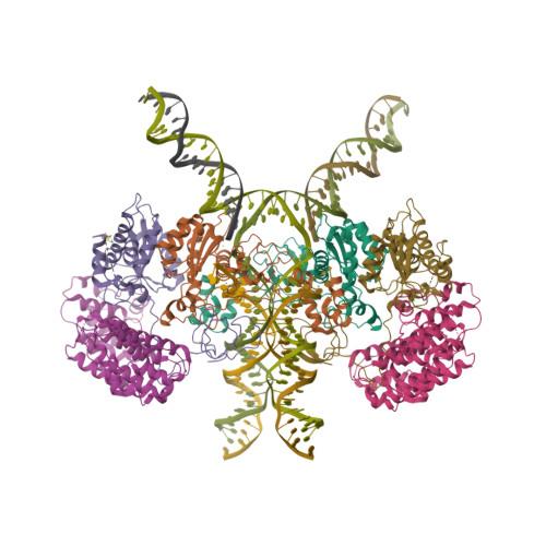 sso7d logo