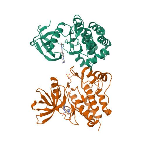 TNK2 logo