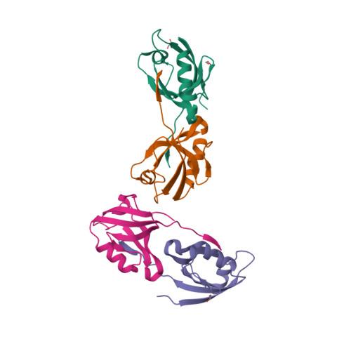 SNTB2 logo