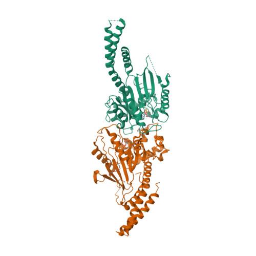 DNM1L logo