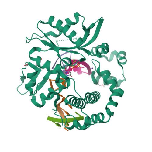 POLM logo