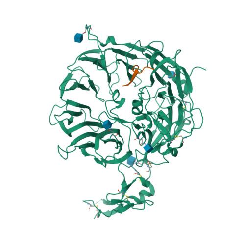 SORL1 logo