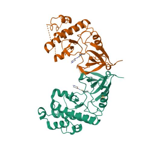 MKNK1 logo