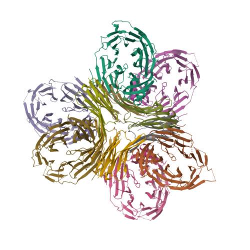 NUP133 logo