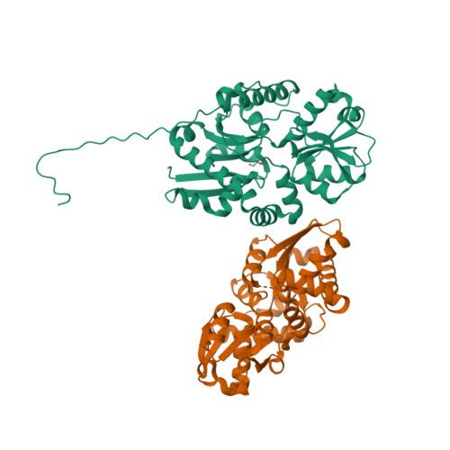 ssuA logo