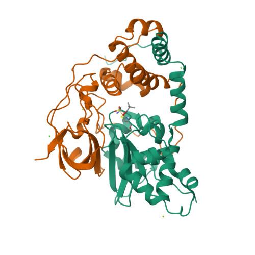 nthB logo