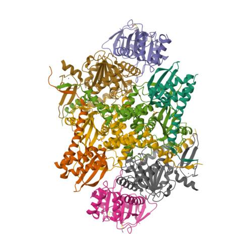 phnI logo