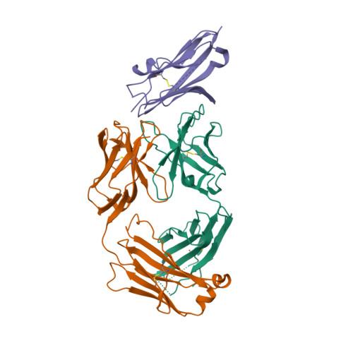 Atezolizumab structure rendering