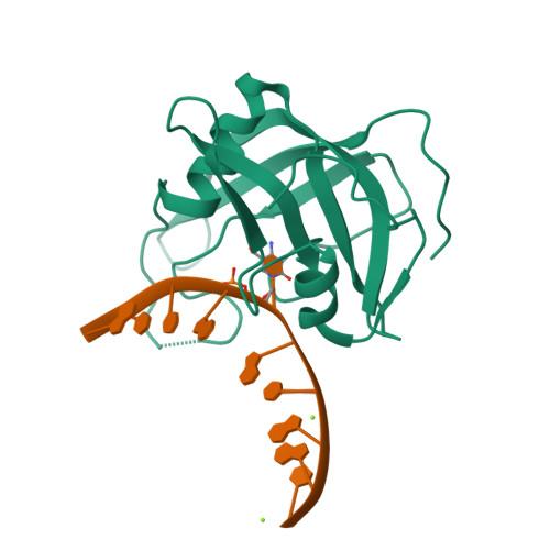 SUVH5 logo