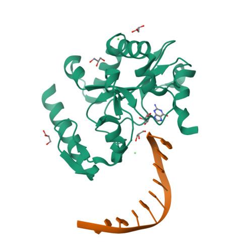 hnt3 logo
