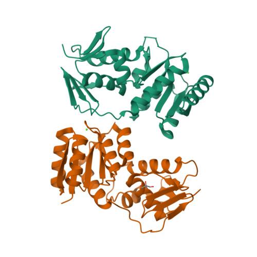 prrA logo