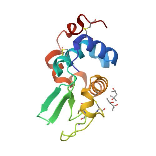 LYZ2 logo