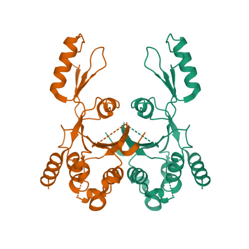 Rcsb Pdb 2zjt Crystal Structure Of Dna Gyrase B Domain Sheds Lights On The Mechanism For T Segment Navigation Learn about dna gyrase with free interactive flashcards. crystal structure of dna gyrase b