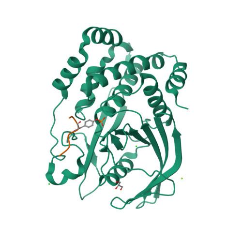 NPHS1 logo