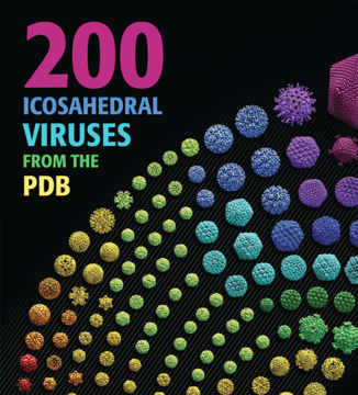 200 Icosahedral Viruses from the PDB