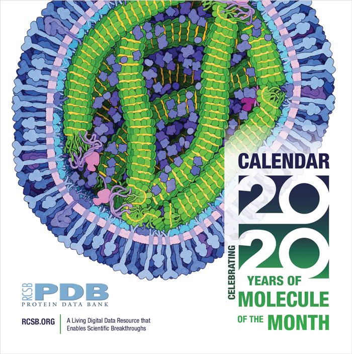 RCSB PDB News Image
