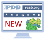 Welcome to the Next Generation RCSB.org