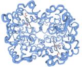 June 1: Retirement of Protein Workshop and Ligand Explorer
