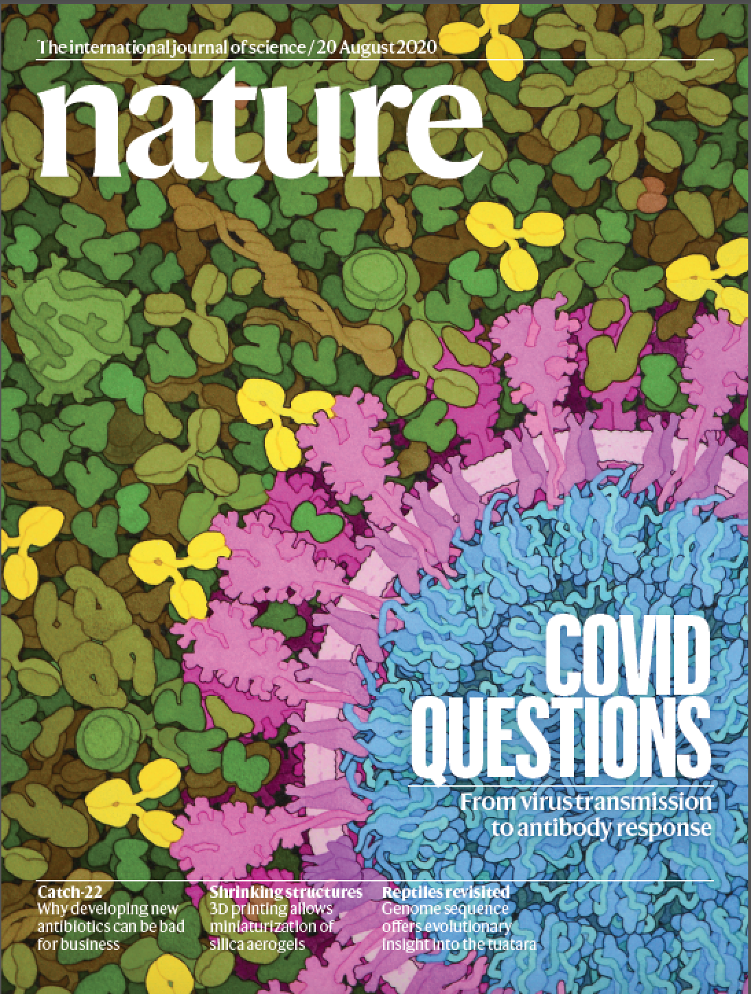 "<a href=""https://www.nature.com/nature/volumes/584/issues/7821"">Volume 584 Issue 7821, 20 August 2020</a>"