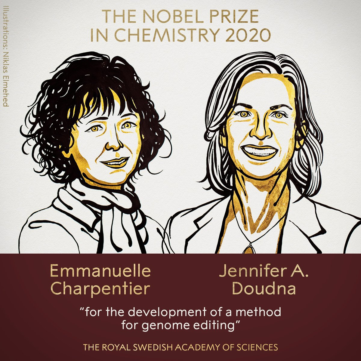 "<a href=""https://www.nobelprize.org/prizes/chemistry/2020/summary/"">The 2020 Nobel Prize in Chemistry has been awarded jointly to Emmanuelle Charpentier and Jennifer A. Doudna for the development of a method for genome editing.</a><P>"