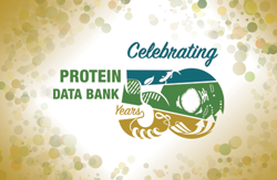 Celebrating the 50th Anniversary of the Protein Data Bank
