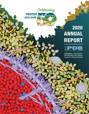 "<a href=""https://cdn.rcsb.org/rcsb-pdb/general_information/news_publications/annual_reports/annual_report_year_2020.pdf"">Download the 2020 Annual Report PDF</a>"