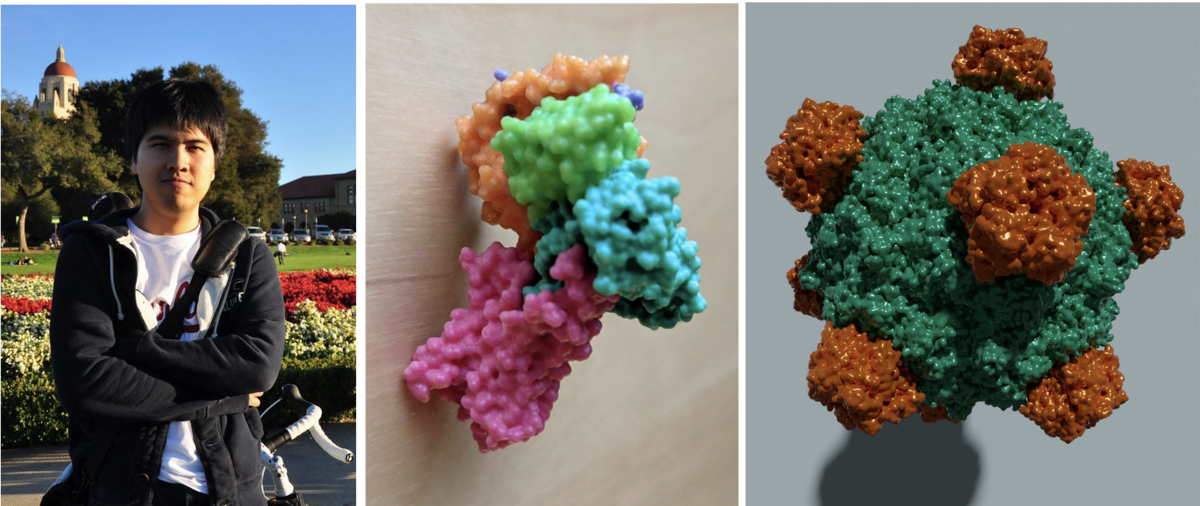 """Photo of Sukolsak. 3D printed model of PDB ID 3SN6. High quality image of PDB ID 1RB8 rendered with the free and open source tool <a href=""""https://www.blender.org/"""">Blender</a>."""