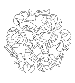 Discovering Biology Through Crystallography Download The Full Coloring Book