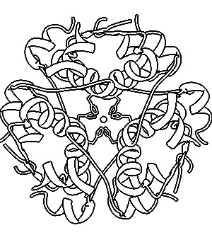 Protein Coloring Sheet Coloring Pages
