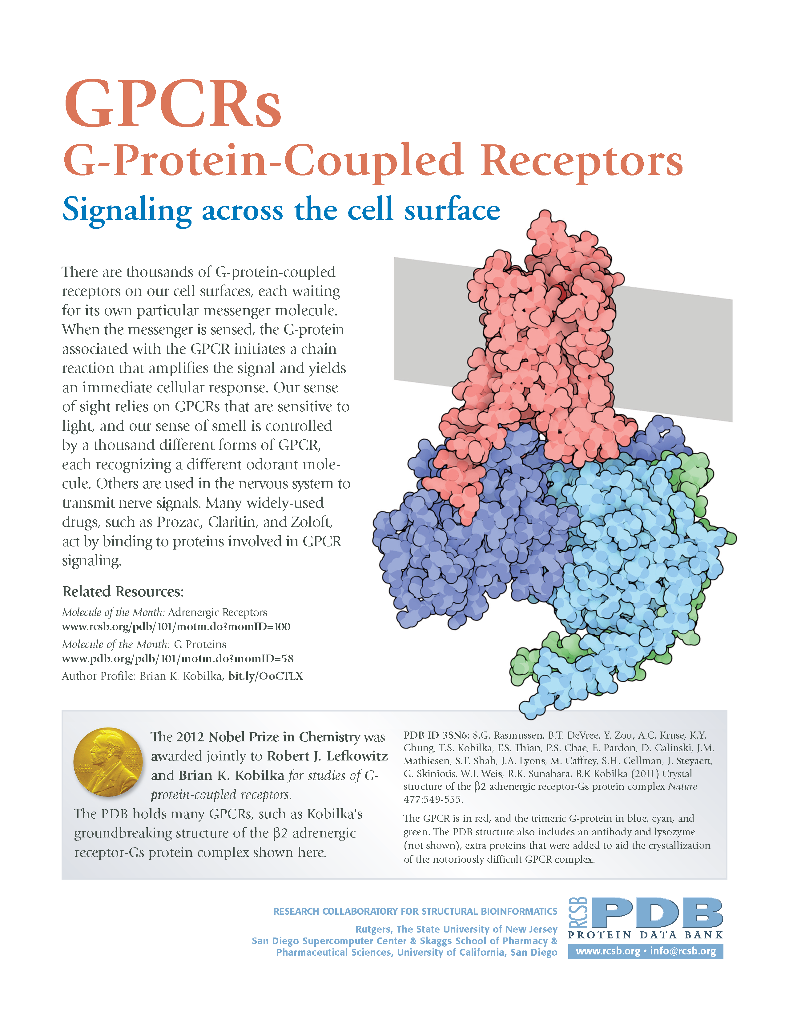 PDB-101: Learn: Flyers, Posters & Other Resources: G-Protein