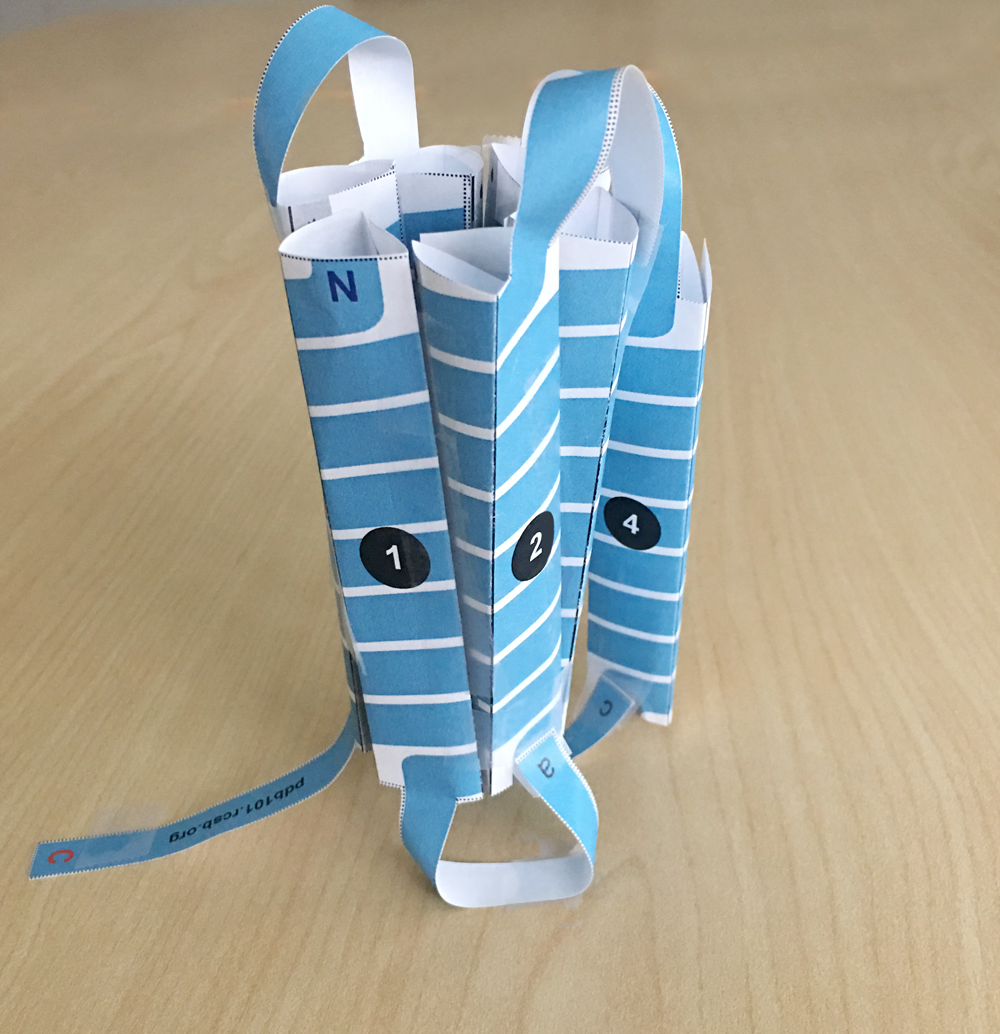 photo of paper model of GPCR