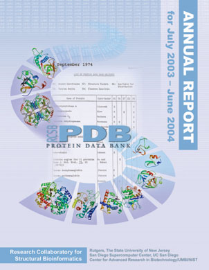 2004 Annual Report Cover