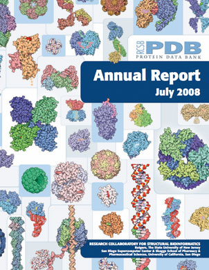 2008 Annual Report Cover