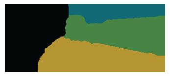 PDB50 logo
