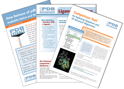 rcsb pdb newsletter summer 2010