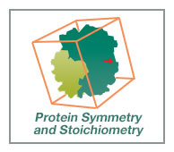 Stoichiometry and Symmetry