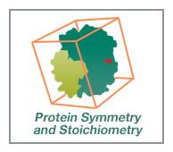 Stoichiometry and Symmetry