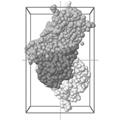 PDB ID: 4AJY cyclic symmetry C1