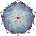 PDB ID: 4FTS icosahedral symmetry I