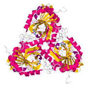 Jmol Thumbnail for Purine Nucleoside Phosphorylase 4EAR